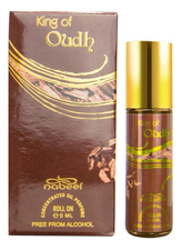 Nabeel King of Oudh